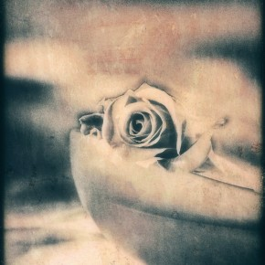 """""""ROSE OF MY HEART...""""  ---  Featured 02.08.2013 by """"Mujeres artistas"""" on FACEBOOK. --- LINKs you will find below..."""
